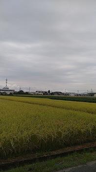 2021-09-01_05-55-08.jpg